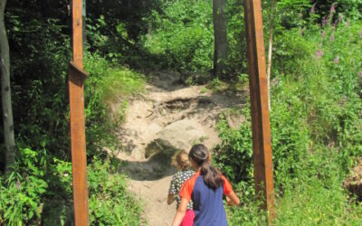 Traseul tematic Stînca Şoimilor din Tusnad