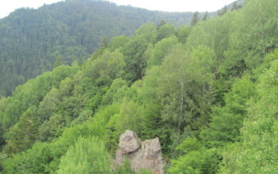 Stâncile Turnuri din Băile Tuşnad