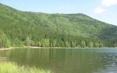 Tinovul Mohoș – Lacul Sfânta Ana